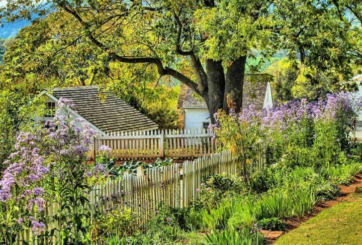 Jardin de printemps
